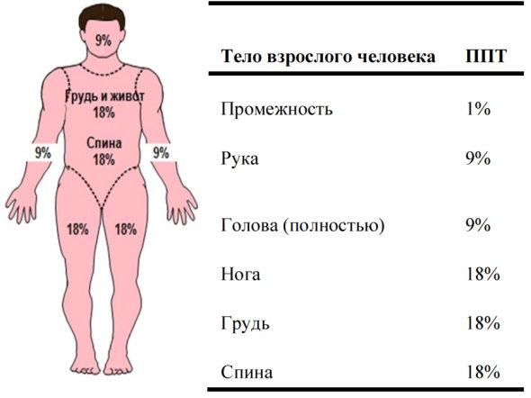 Оценка площади поверхности тела