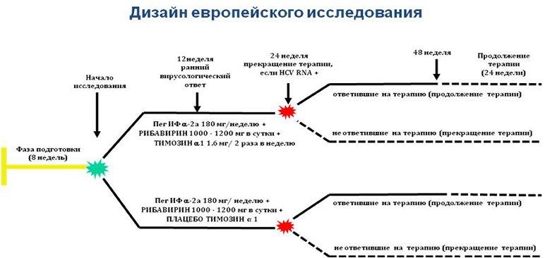 Рис. 2. Схема европейского исследования эффективности тройной схемы лечения пациентов с хроническим гепатитом С...